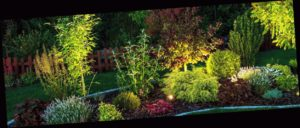Професионално озеленяване в София